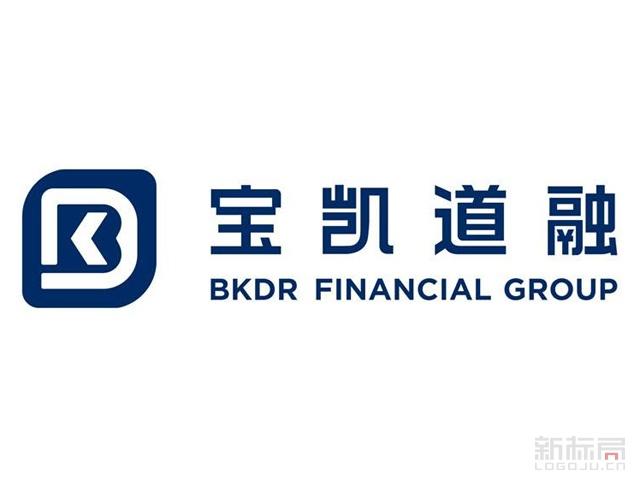 金融服务公司宝凯道融标志logo