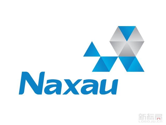 纳狮涂层有限公司标志logo