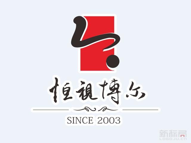 恒视博尔文化传媒标志logo
