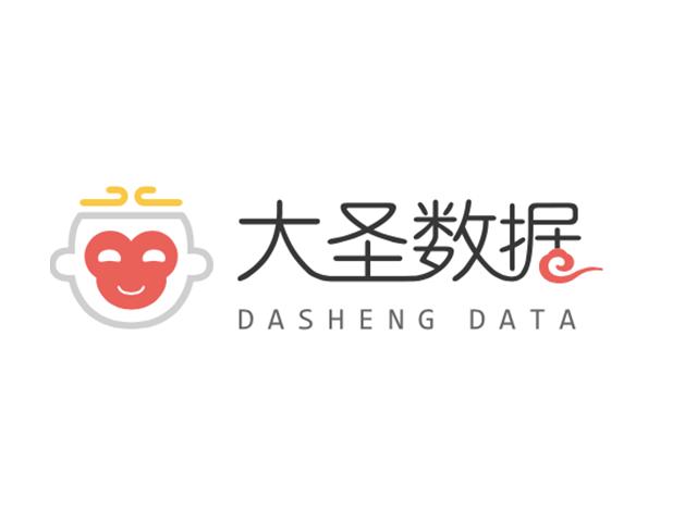 大圣数据标志logo