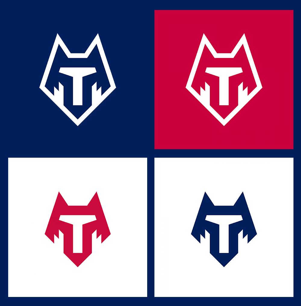 俄罗斯坦波夫足球俱乐部Tambov新队徽标志logo